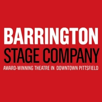 Barrington Stage Company Hopes to Reopen the Theater This Summer Photo