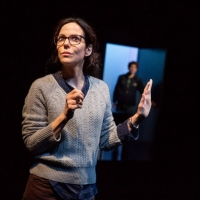 BWW Review: Mary-Louise Parker Cerebrally Fascinates in Adam Rapp's Quietly Riveting  Photo