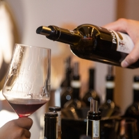 """TOTAL WINE & MORE Announces 2nd Annual """"Wine and Wanderlust"""" Event in Miami and Boca Raton Photo"""