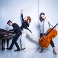 The New School's Mannes College of Music Announces Schneider Concerts Online Season Photo