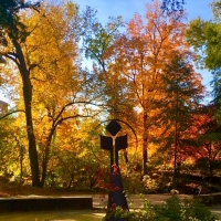 BWW Blog: Why I Chose Chico State Photo