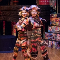 Concord Theatricals Announces One-Hour, Young Actors' Version of CATS Now Available Photo