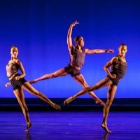 Dallas Black Dance Theatre To Take Part In Jacob's Pillow International Dance Festiva Photo