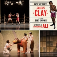 Metro Theater Company Awarded $55,000 PNC Arts Alive Grant To Support Ongoing Streami Photo
