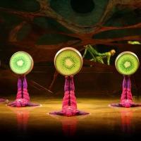 Cirque Du Soleil's OVO Arrives In Phoenix