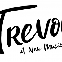 National Virtual Casting Call Announced For TREVOR: THE MUSICAL Photo