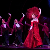 BWW Review: HELLO DOLLY Dazzles But Disappoints at PPAC Photo