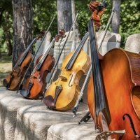Savannah Philharmonic To Perform Family Friendly Concert in June Photo