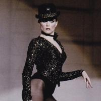 BWW Blog: A Tribute to Ann Reinking Photo