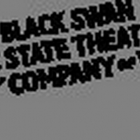 Leadership Change Announced at Black Swan Photo