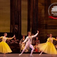 VIDEO: Watch Russia's Bolshoi Theater's SWAN LAKE; 6 New Productions Will Become Avai Photo