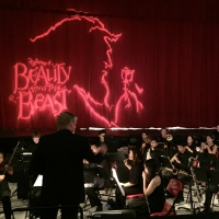 BWW Blog: From The Eyes of the Pit Orchestra Photo