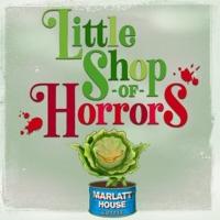 Centre Stage Announces LITTLE SHOP OF HORRORS Photo