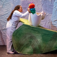 BWW Review: THE VERY HUNGRY CATERPILLAR SHOW at The Kleberg At ZACH