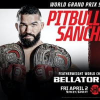 Showtime Sports to Offer BELLATOR MMA Debut Event for Free Photo