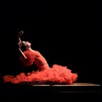 BWW Review: Olga Pericet Presents Her Unique Flamenco Flair In LA ESPINA at John Anso Photo