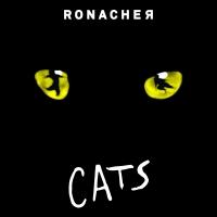 BWW Review: CATS Returns To Ronacher Photo