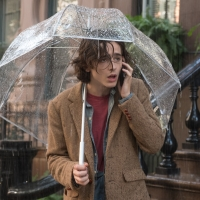 BWW Review: A RAINY DAY IN NEW YORK, Home Premiere Photo