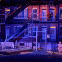 BWW Review: THE GLASS MENAGERIE at Tennessee Williams St. Louis Festival Photo