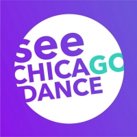 See Chicago Dance Appoints Julia Mayer as New Executive Director Photo