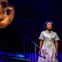 BWW Review: CAROLINE, OR CHANGE at the Winter Garden Theatre