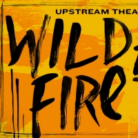 BWW Review: WILDFIRE Burns With Raw Emotion Photo