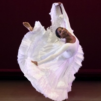 Ailey All Access Returns with a Fall Series of Free Digital Broadcasts Photo
