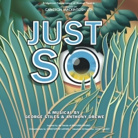 Bridgetown Conservatory of Musical Theatre Returns to In-Person Theatre with JUST SO: THE Photo