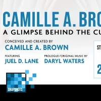 CAMILLE A. BROWN - A GLIMPSE BEHIND THE CURTAIN Next Up on MTC's Snapshot Series Photo