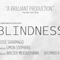 Shakespeare Theatre Company Welcomes Back Patrons To Sidney Harman Hall With BLINDNES Photo