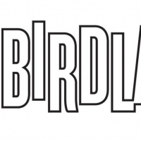 Julie Halston, Michael Longoria and More Are Coming to Birdland Photo