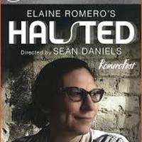 BWW Review: Elaine Romero's HALSTED Is A Bold Stroke Of Illumination ~ Launching Rome Photo