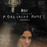 PJ HARVEY - A DOG CALLED MONEY Will Premiere Dec. 7 Photo