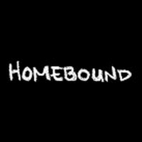 BWW Video: Episode Six of Round House Theatre's Webseries Homebound and a Word from it's Leadership