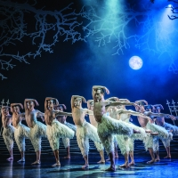 BWW Review: BWW REVIEW:  MATTHEW BOURNE REIMAGINES SWAN LAKE at New York City Center Photo
