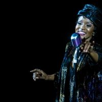 BWW Review: JOSEPHINE Puts Showbiz's First Black Superstar in a One-of-a-Kind Spotlight at Photo