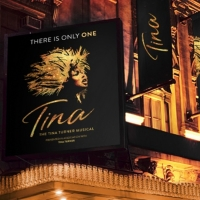 TINA, THE MUSICAL - Luces y Sombras