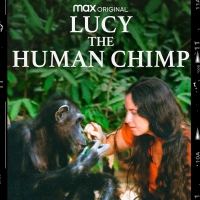 Documentary Feature LUCY THE HUMAN CHIMP To Stream In The U.S. Exclusively On HBO Max Photo
