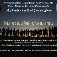 Vermont Actors' Repertory Theatre Presents A November Zoom Play Festival Photo