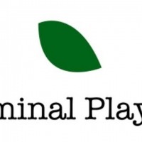 The Liminal Playhouse Postpones Remainder of 2019 – 2020 Season to 2021