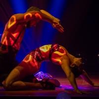 LIO IBIZA is Coming to Las Vegas in October at Bellagio Photo