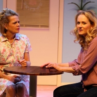 BWW Review: THE CAKE is Sweet at The Human Race Theatre Company Photo