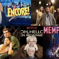 BWW Blog: Summer Streaming 101 - Theatre Edition Photo