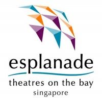 Esplanade Presents Lester Ang & Chok Kerong Live Streamed Photo