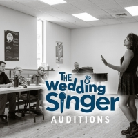 The Naples Players Announce Auditions And Workshops For THE WEDDING SINGER Photo