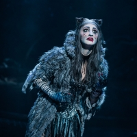 Tickets for CATS Go On Sale August 23 for Music Hall At Fair Park Engagement Article