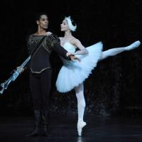 Birmingham Royal Ballet Glides Into 2020 With UK Tour Of SWAN LAKE Photo