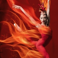 Miami City Ballet Will Premiere Balanchine and Robbins' FIREBIRD Featuring All New Se Photo