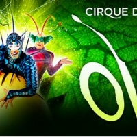 OVO From Cirque Du Soleil Announced At Thompson-Boling Arena For 7 Performances Only