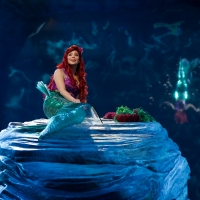 VIDEO: Watch Auli'i Cravalho, Queen Latifah, Shaggy, and More in Highlights From THE LITTLE MERMAID LIVE!